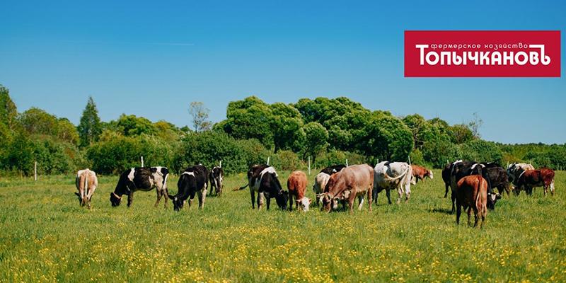 Несмотря на «коронакризис», фермерское хозяйство «Топычканов» в составе ГК АКИГ продолжает активную работу